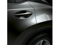 Lexus RX450hL Door Edge Guards-Autumn Shimmer (4X2)-Autumn Shimmer (4X2) - PT936-48160-14
