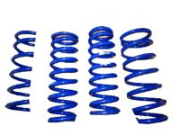 Lexus IS300 F-Sport Lowering Springs - PTR07-53140