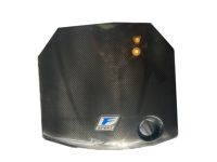 Lexus GS350 F SPORT Carbon Fiber Engine Cover - PTR48-53081